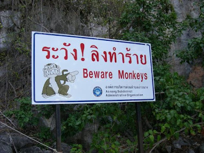 Beware Monkeys!