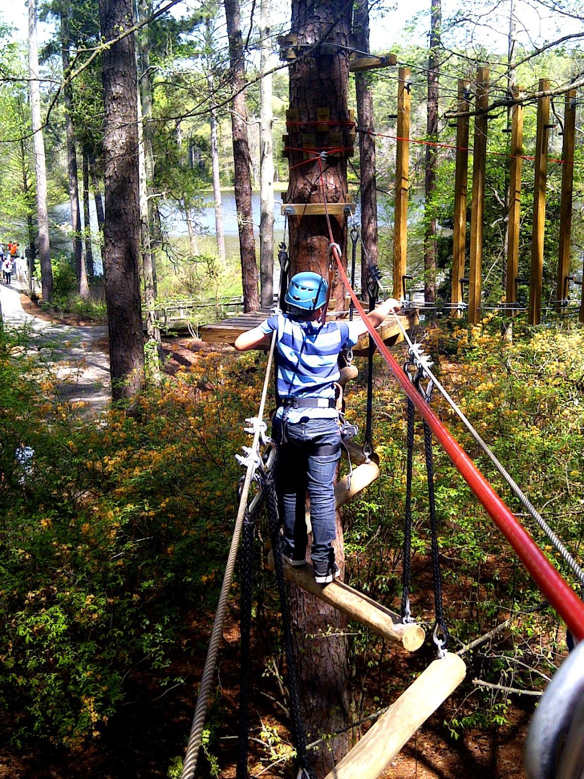 Bluebird Travels Callaway Gardens Treetop Adventure The Bluebird Patch