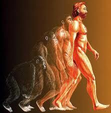"Catatan Pinggir: Apa yang dimaksud dengan ""Evolusi?"""