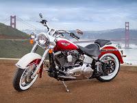 2013 Harley-Davidson FLSTN Softail Deluxe pictures 1