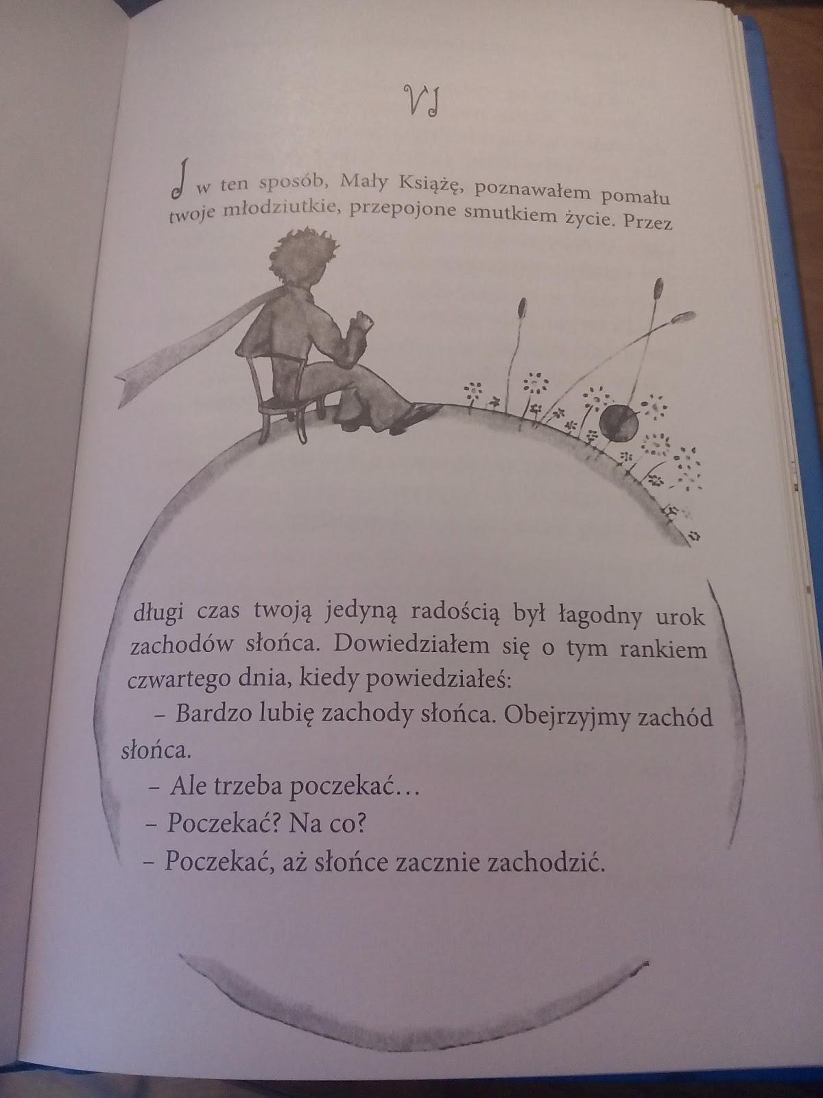 Książkowy Wolontariat Mały Książę W Mojej Głowie