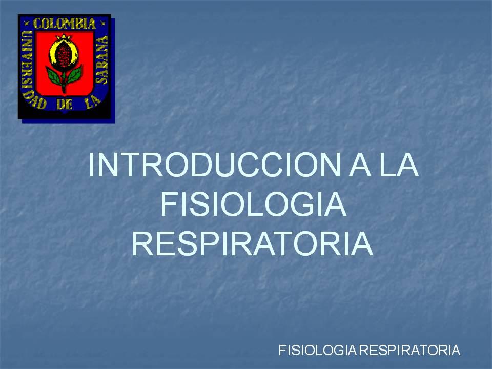 Fisiologia Respiratoria | Rehabilitación Fisioterapeutica