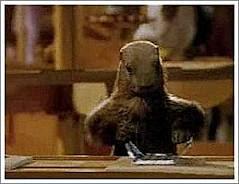 http://2.bp.blogspot.com/-Uy1cAFQVAWA/UI7j3aFShuI/AAAAAAAAFgE/T9PuNxBScec/s280/marmotte.jpg