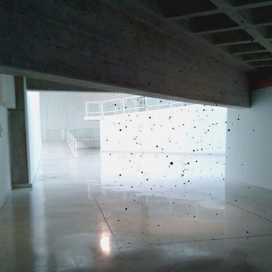 Carlos Medina - Neutrinos