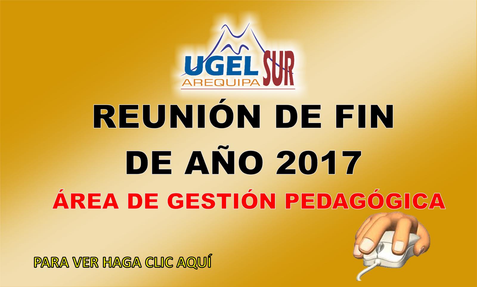 ARCHIVOS DE LA REUNIÓN DE FIN 2017