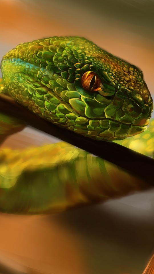 Snake Crawling Galaxy Note HD Wallpaper