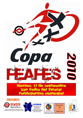 CARTEL DE LA COPA 2010