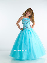 Little Girl Princess Dresses
