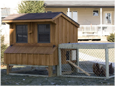 Chicken coop designs a small chicken coop for Small chicken house plans