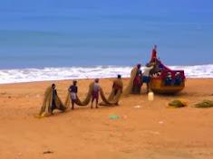 חדש... מסע אישי נשי לדרום הודו... חדש