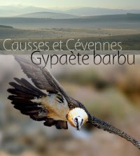 LES SITES DE LA MISSON RAPACES