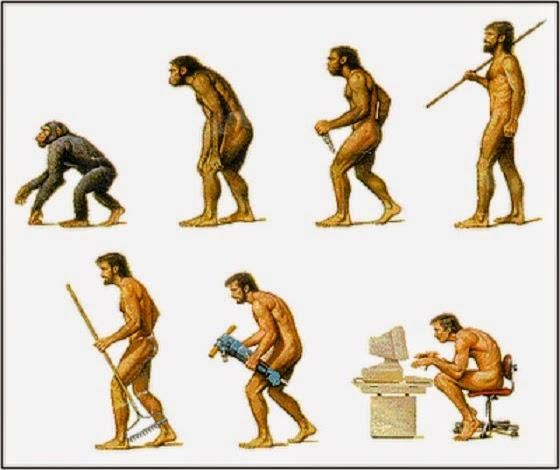 the cultural evolution of - photo #11