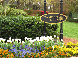 Camden Glen-Willow Springs Enclave