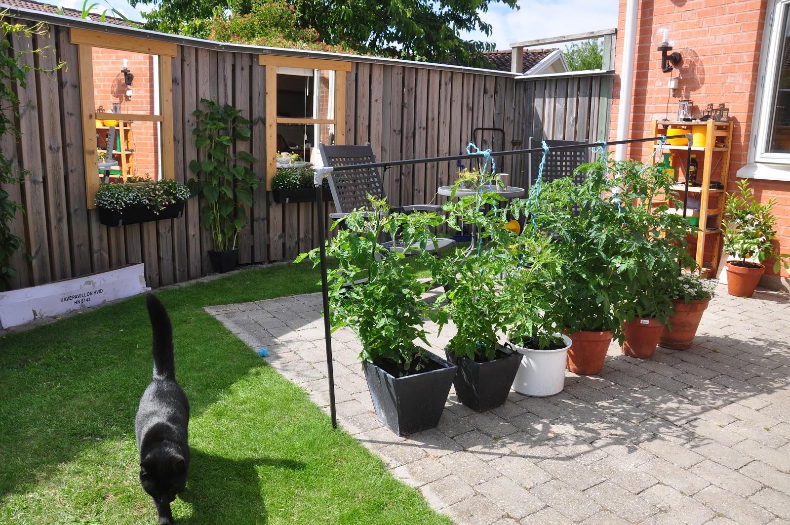 Trädgård plank trädgård : Husvagn och trädgÃ¥rd | Min husvagn och jag