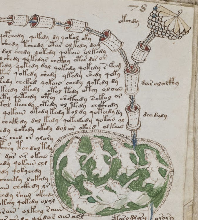 Voynich Manuscript Facsimile Voynich Manuscript p