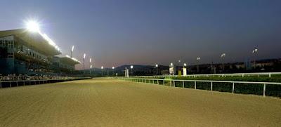 28.09.2013 izmir yarışları (tahmin-sonuç-tüyo)
