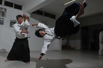 sakanashi sensei