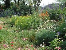 Attirant Butterfly Garden Design