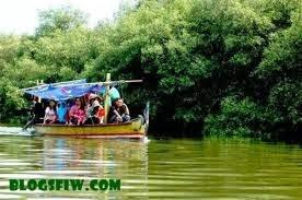 Ekowisata Mangrove di Wonorejo, Rungkut, Surabaya
