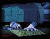 Bosco under bed
