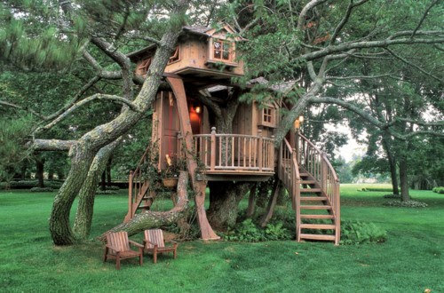 Ideas making a treehouse in the backyard for Best backyard tree houses