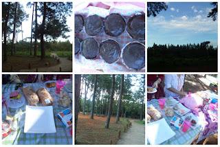 picnic, piquenique, cupcake, jardim botânico, Brasília