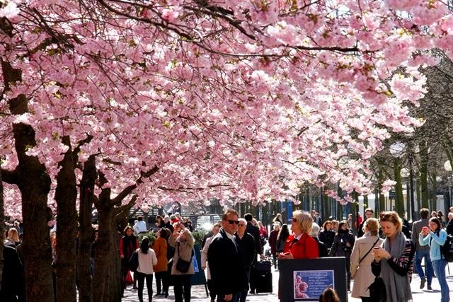 kevät Tukholmassa