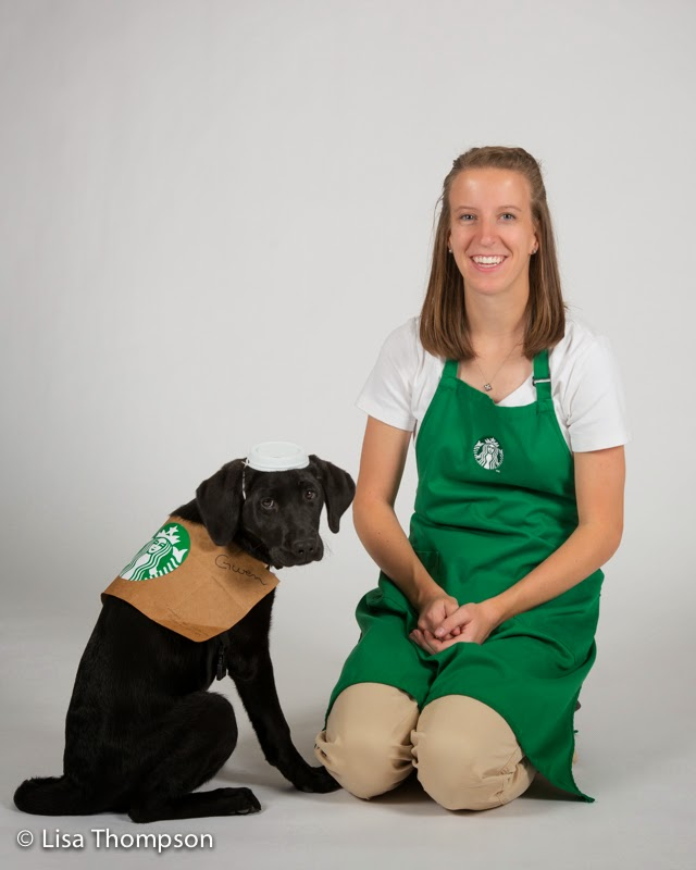 Black Lab puppy Gwen dressed as a coffee with a sleeve and lid as the Starbarks costume (handled by puppy raiser Hannah Thompson dressed as a barista with a green aproon).