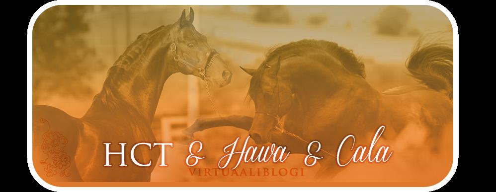 HCT & HAWA & CALA