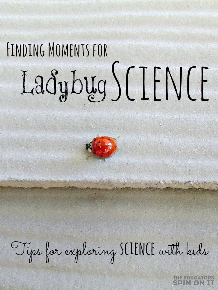 Ladybug Science Activities for Kids from the Educators' Spin On It