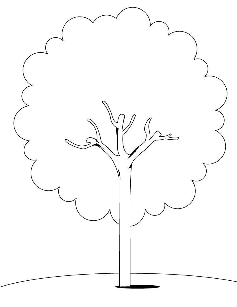 Раскраска деревья кусты