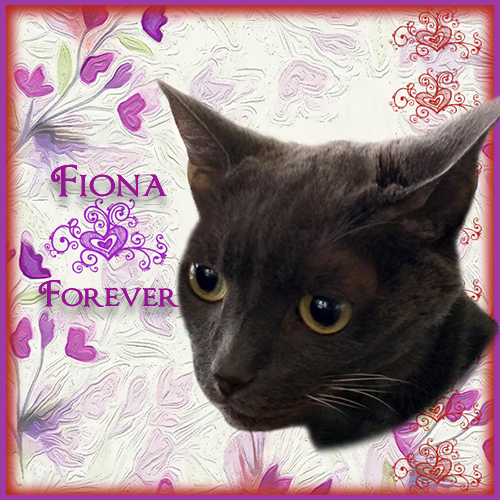 Rest in peace Fiona