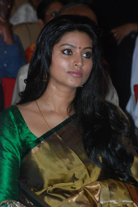 sneha spicy in saree at event hot images