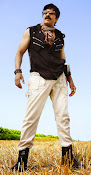 Bengal Tiger Ravi Teja photos gallery-thumbnail-5