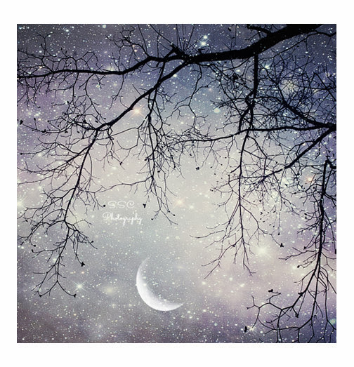 https://www.etsy.com/listing/127338518/night-sky-photo-moon-art-purple-sky?ref=sr_gallery_43&ga_search_query=trees+at+night&ga_view_type=gallery&ga_ship_to=US&ga_page=5&ga_search_type=all