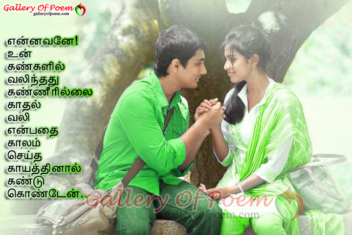 204+ Fully New And Latest Tamil Love Kavithaigal And Quotes