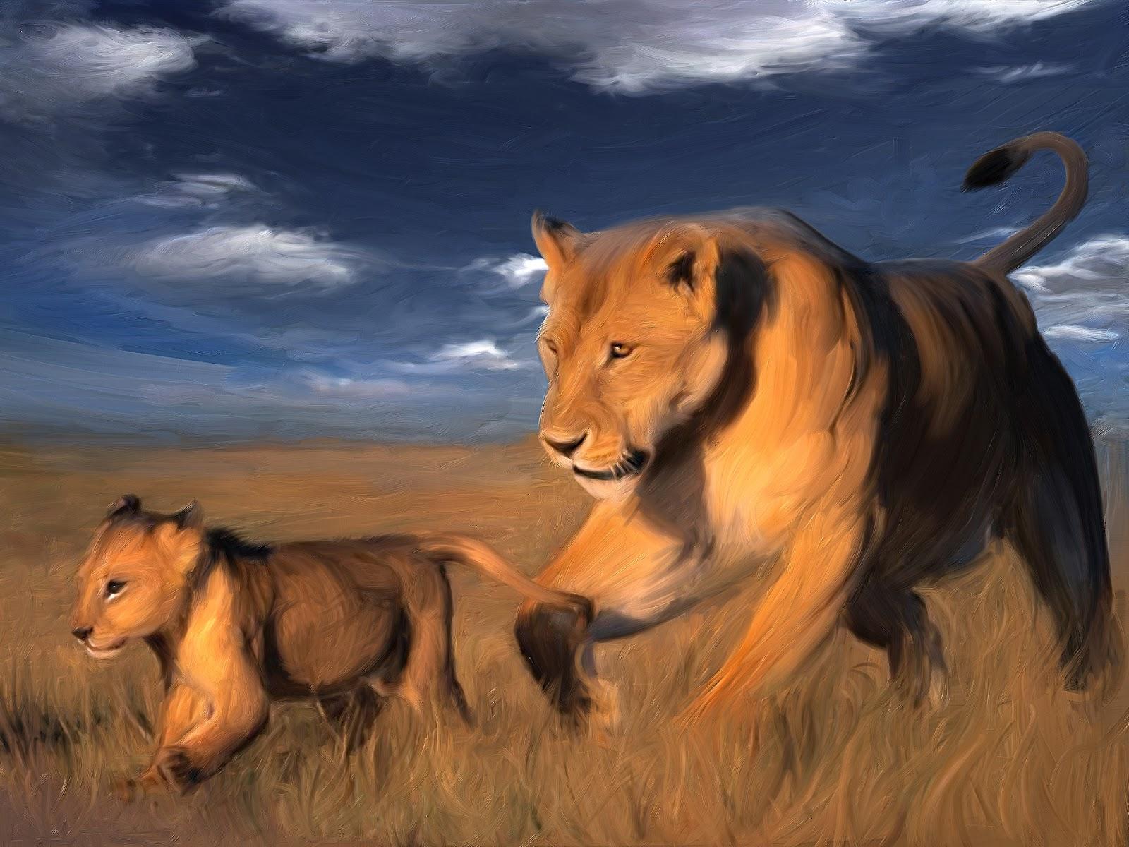 animals wallpapers hd beautiful animals for desktop