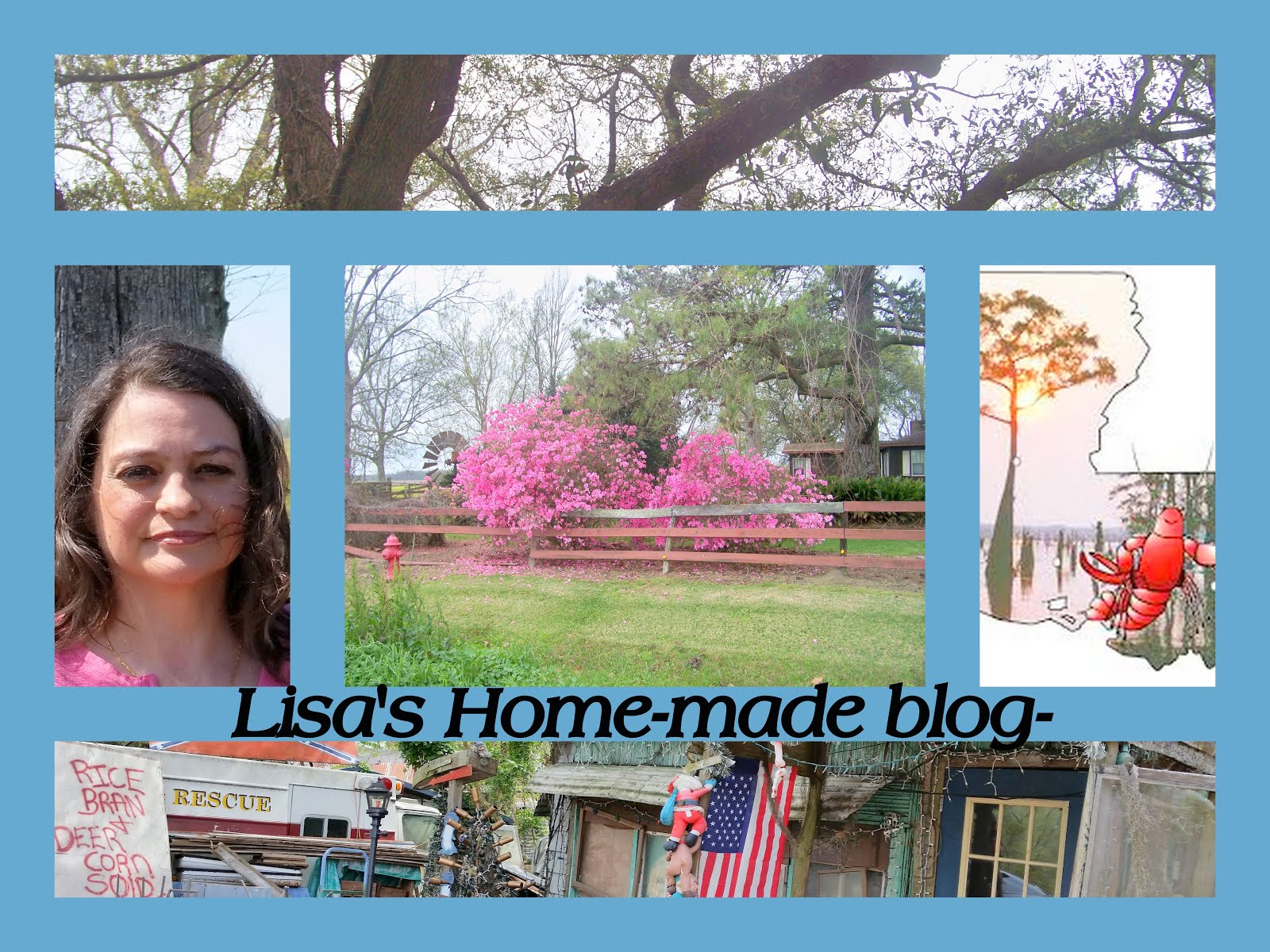 Lisa's Home  Made Blog-