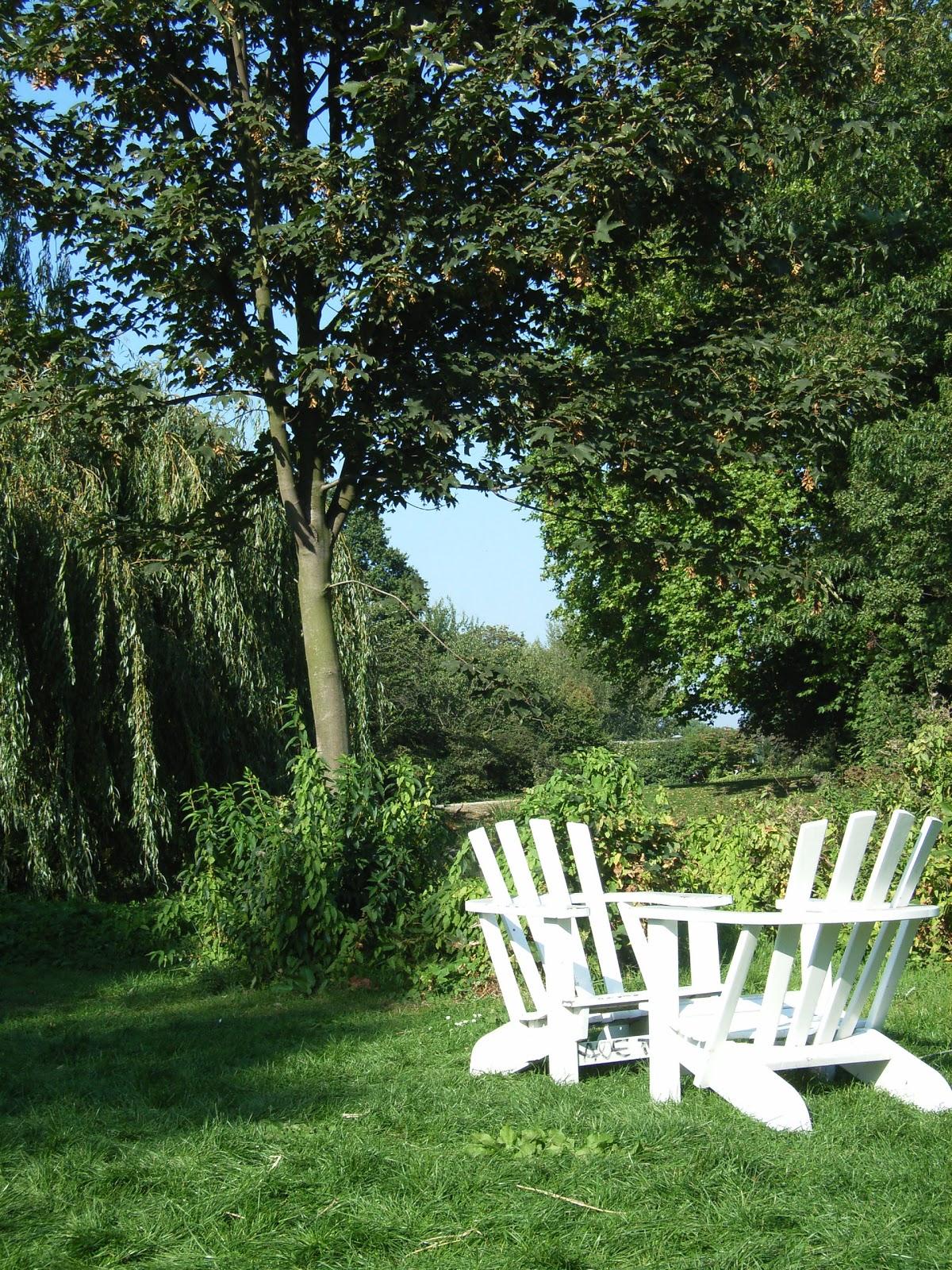 Park - Stühle - Bäume - Sommer