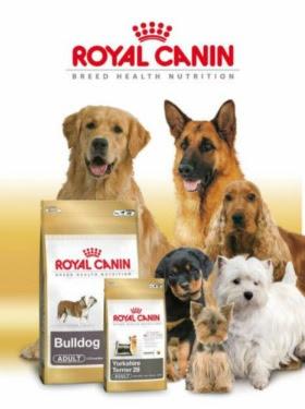 Alimenta tu mascota con Royal Canin