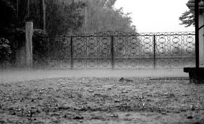 Hipernovas: Nada se Compara à Beleza dos Dias e Noites Chuvosas [45 Imagens]