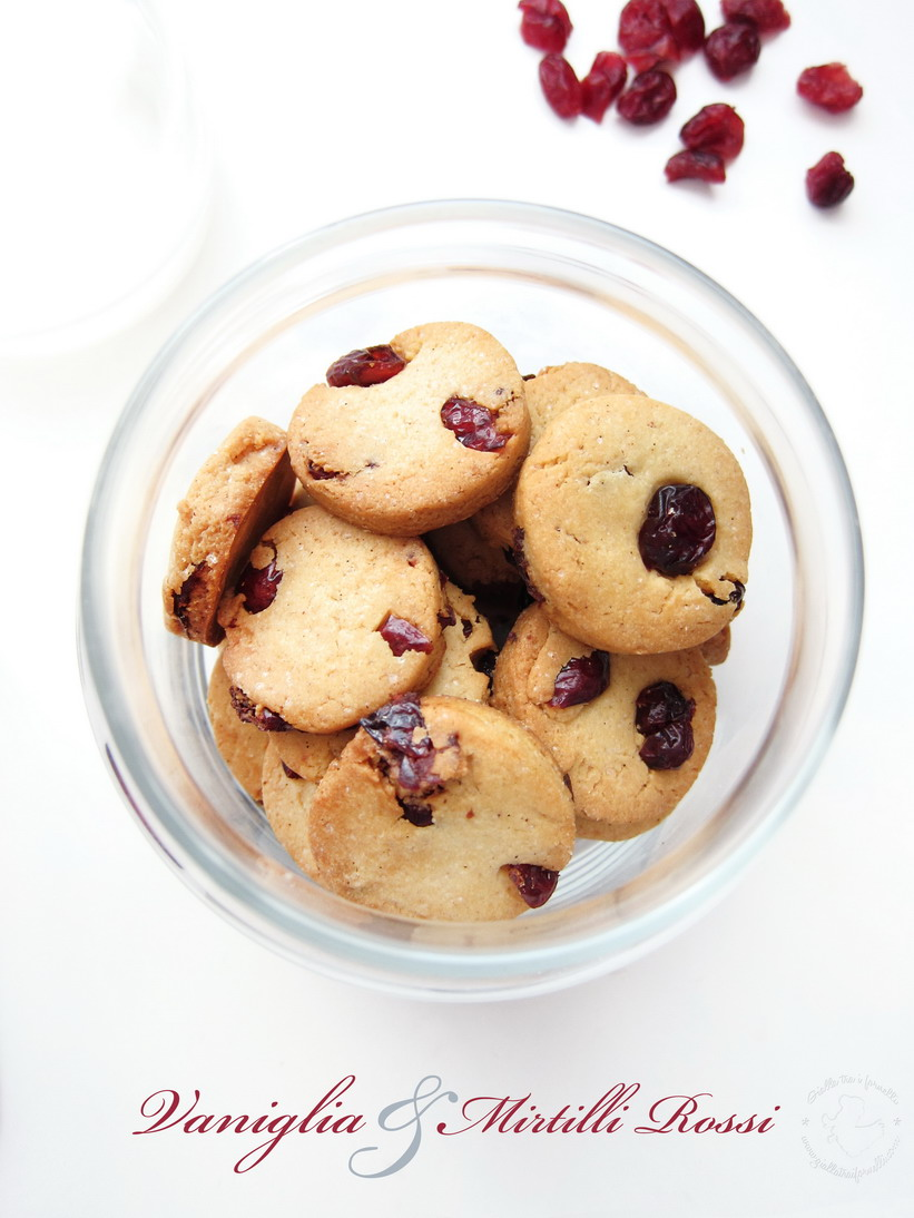 Vanilla Cranberry Biscotti - Biscotti vaniglia e mirtilli rossi