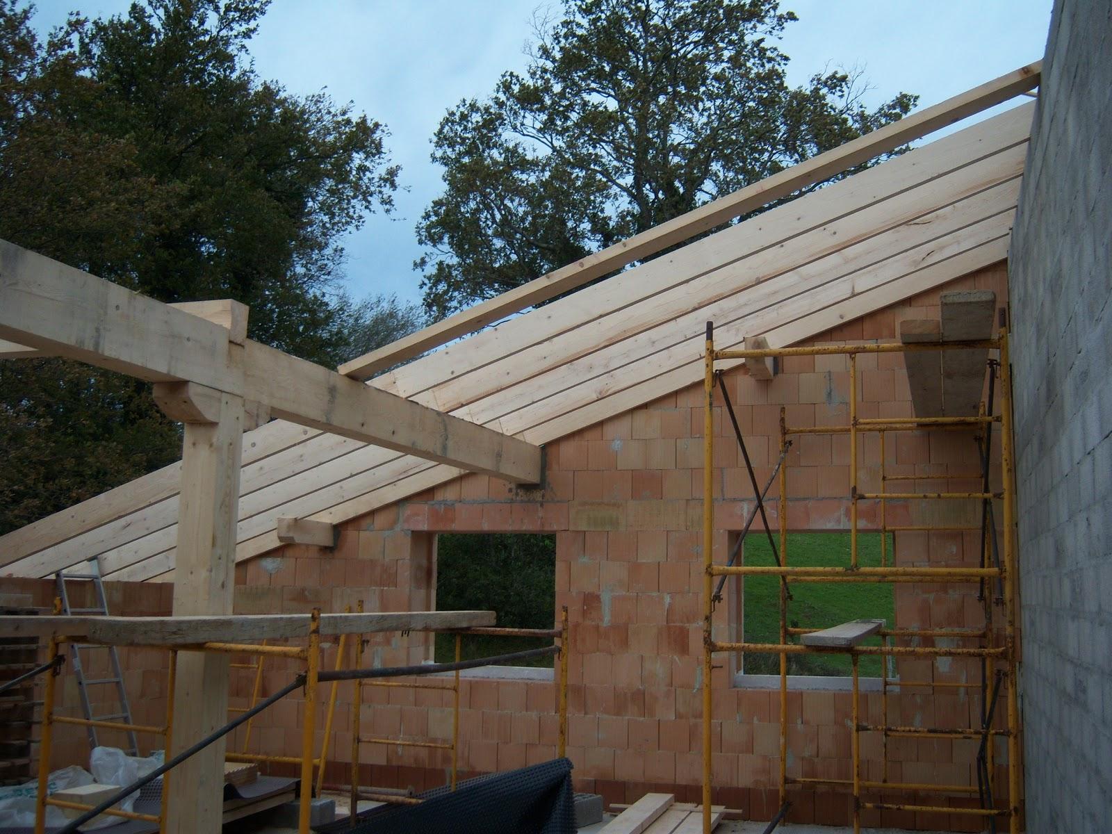Andocarpinteando tejado con aislante de fibras de madera - Forrar pared de madera ...
