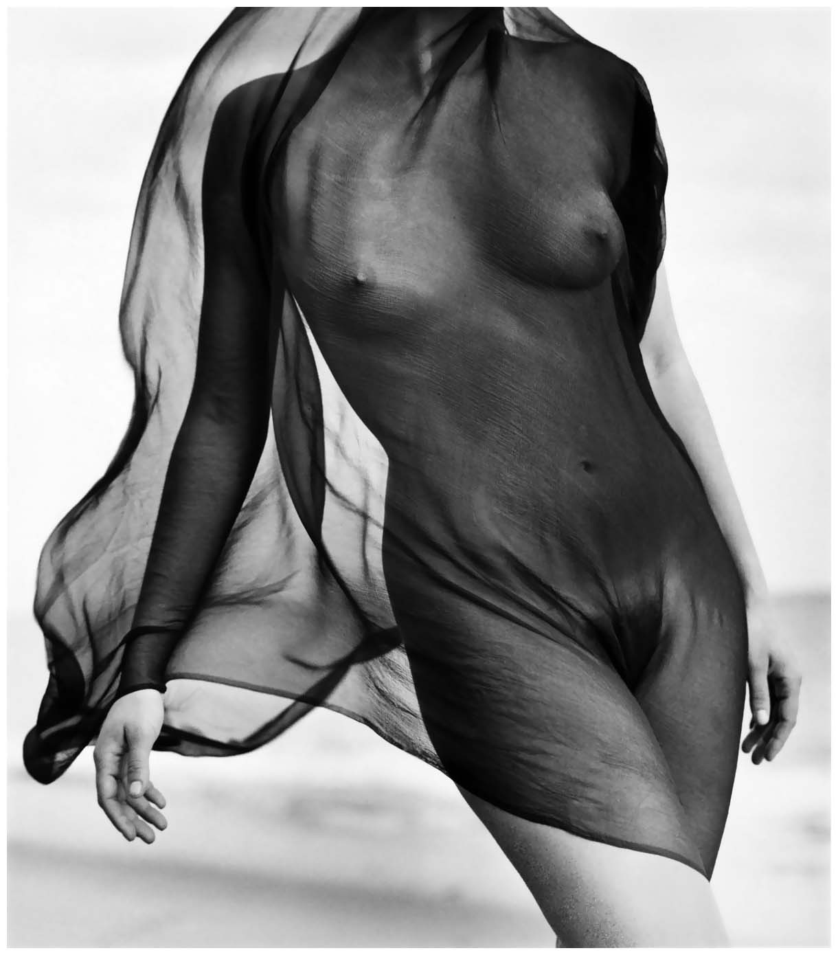 http://2.bp.blogspot.com/-V4qHJFHoKBc/URh8msCE_HI/AAAAAAAAHY8/dK945KDRAiM/s1600/female-torso-with-veil-1984-photo-herb-ritts1.jpg