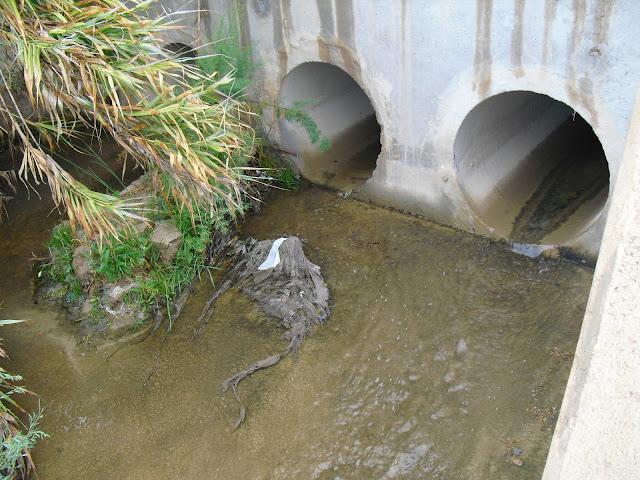 Facsa-Mazarron-depuradora-Moreras-rambla-agua residual