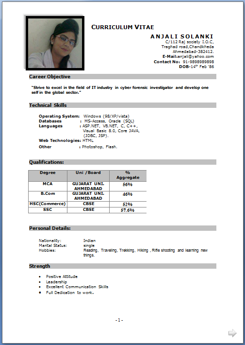 Curriculum Vitae For Job Application Resume Cv Template Examples