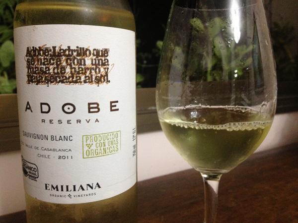 Kết quả hình ảnh cho adobe sauvignon blanc