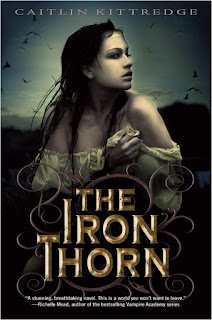 https://www.goodreads.com/book/show/6234910-the-iron-thorn