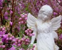 http://www.ryanfuneralservice.com/fh/obituaries/obituary.cfm?o_id=2041365&fh_id=10436