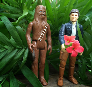 Chewbacca and Han Solo at Stein Your Florist Co.